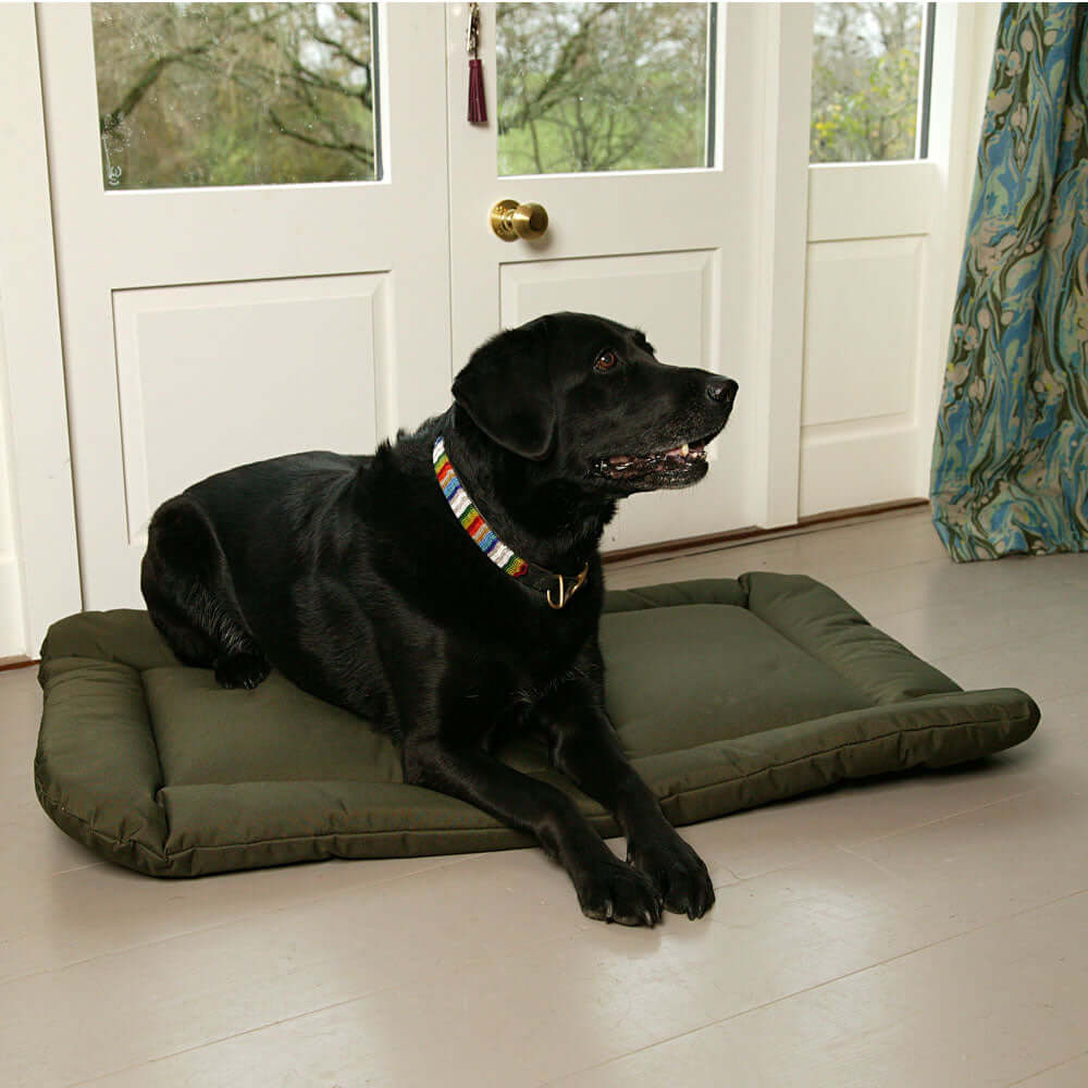 Country Dog Heavy Duty Waterproof Crate Pad by Dogs Dogs Dogs