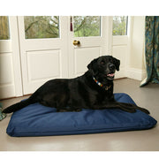 Black Labrador lying on a crate bed mattress for dogs