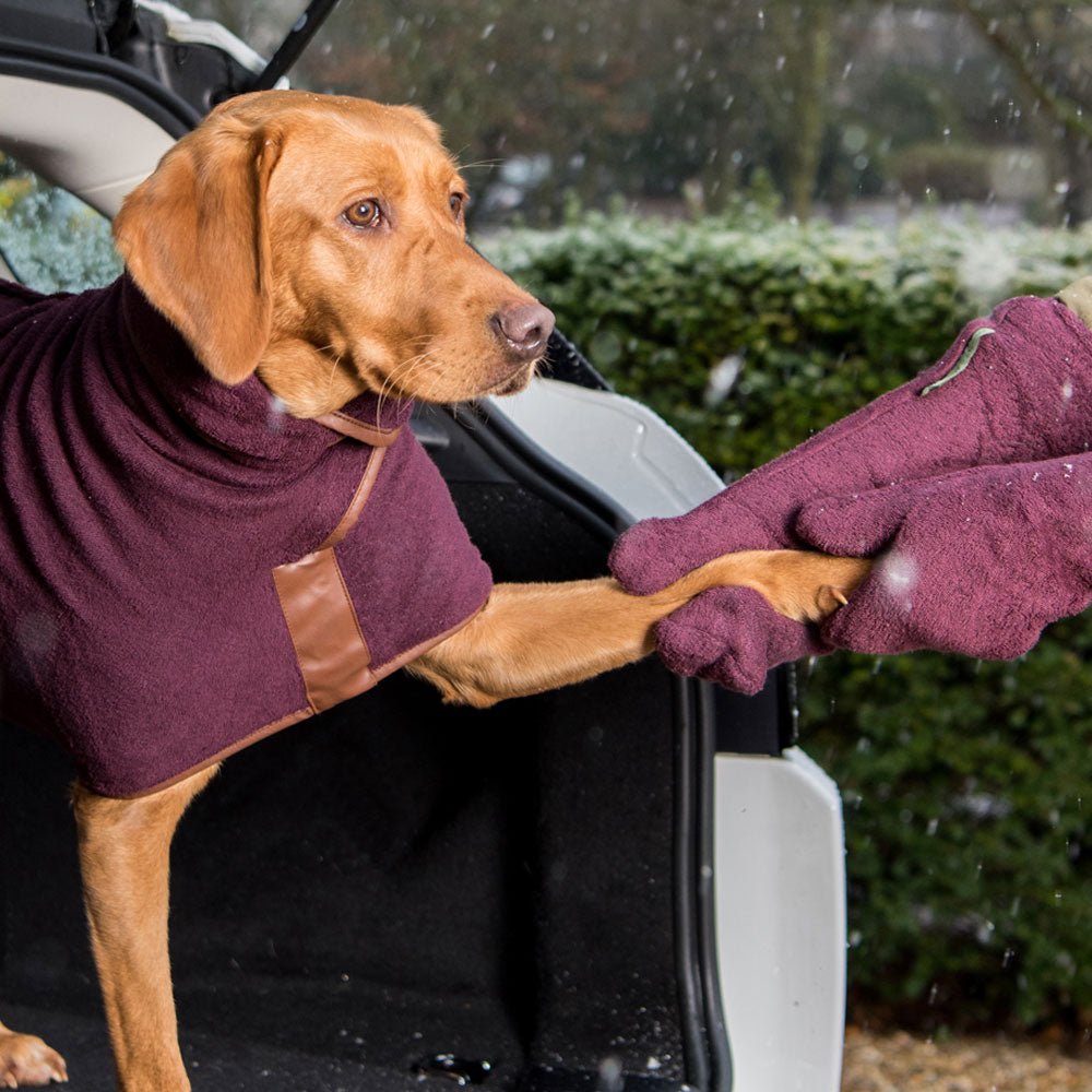 Ruff & Tumble Drying Mitts, Dog Supplies by Dogs Dogs Dogs