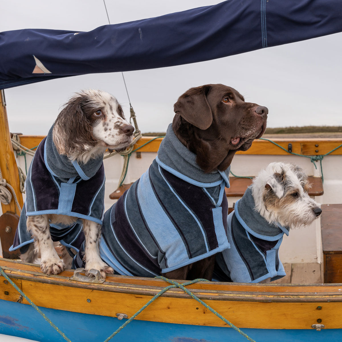 Ruff and Tumble Harbour Collection Drying Coat by  Dogs Dogs Dogs