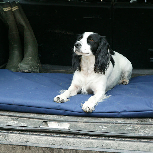 Dog bed mattress for car boots with a spaniel on