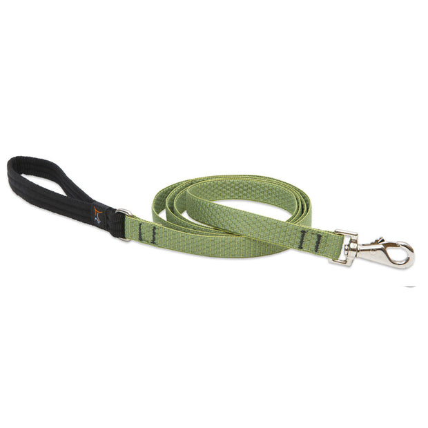 Lupine Eco 6' Dog Lead