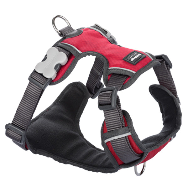Red Dingo Padded Harness - Red, Pet Collars & Harnesses by Dogs Dogs Dogs