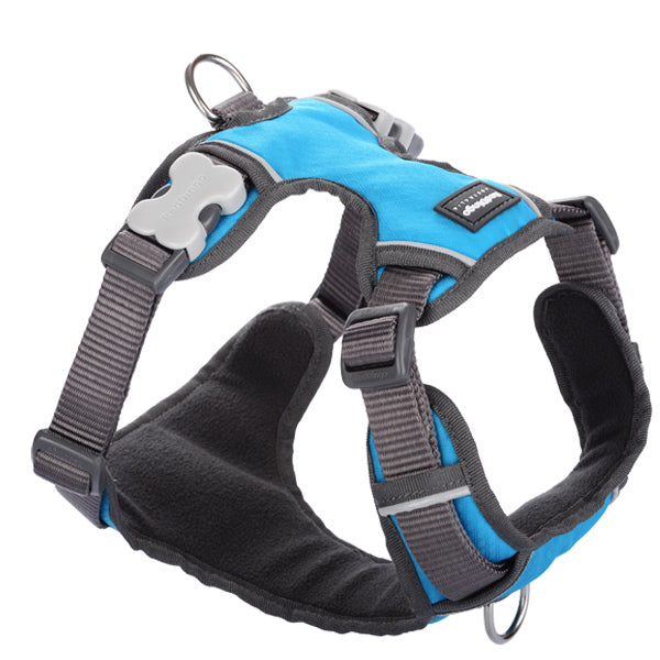 Red Dingo Padded Harness - Turquoise, Pet Collars & Harnesses by Dogs Dogs Dogs