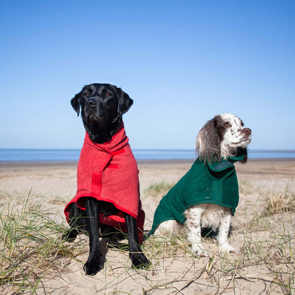 Ruff & Tumble Classic Drying Coat, Dog Apparel by Dogs Dogs Dogs