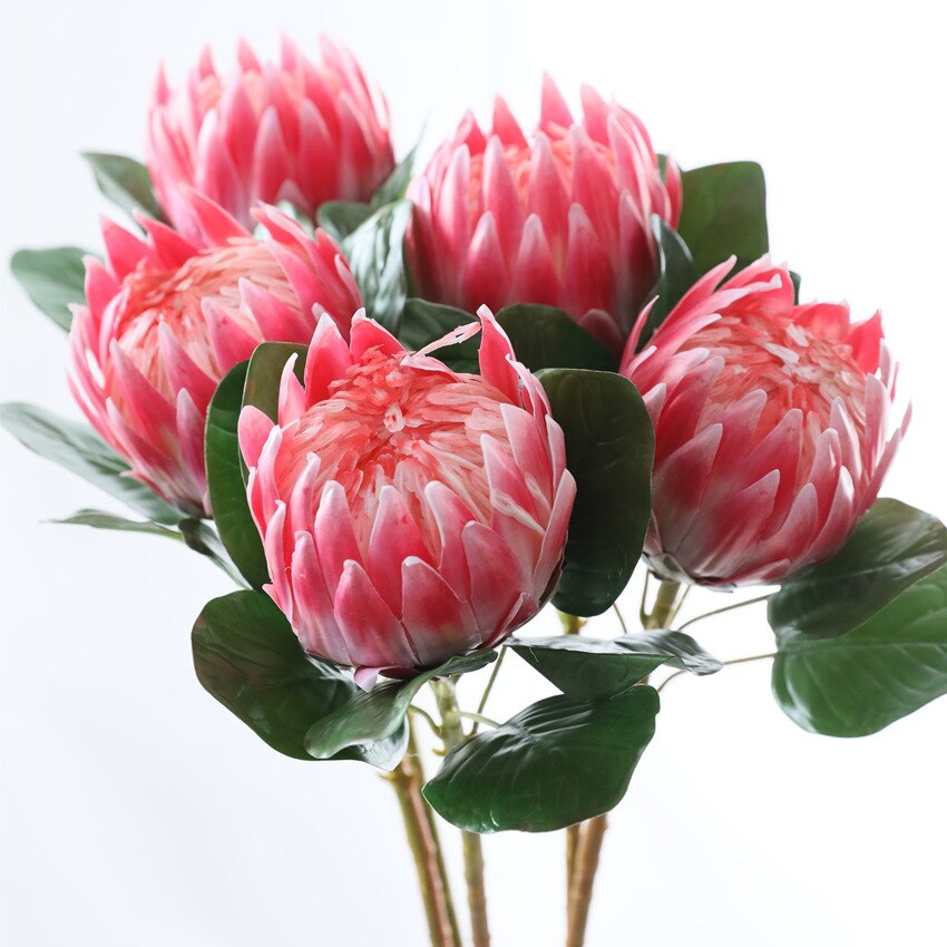 South African Emperor Flower ProteaFlorals For Less cheap artificial fake flowers online