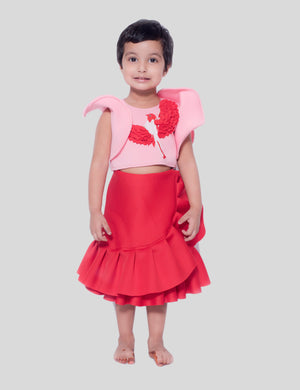 Bird Crop Top and Skirt in Pink and Red for Girls