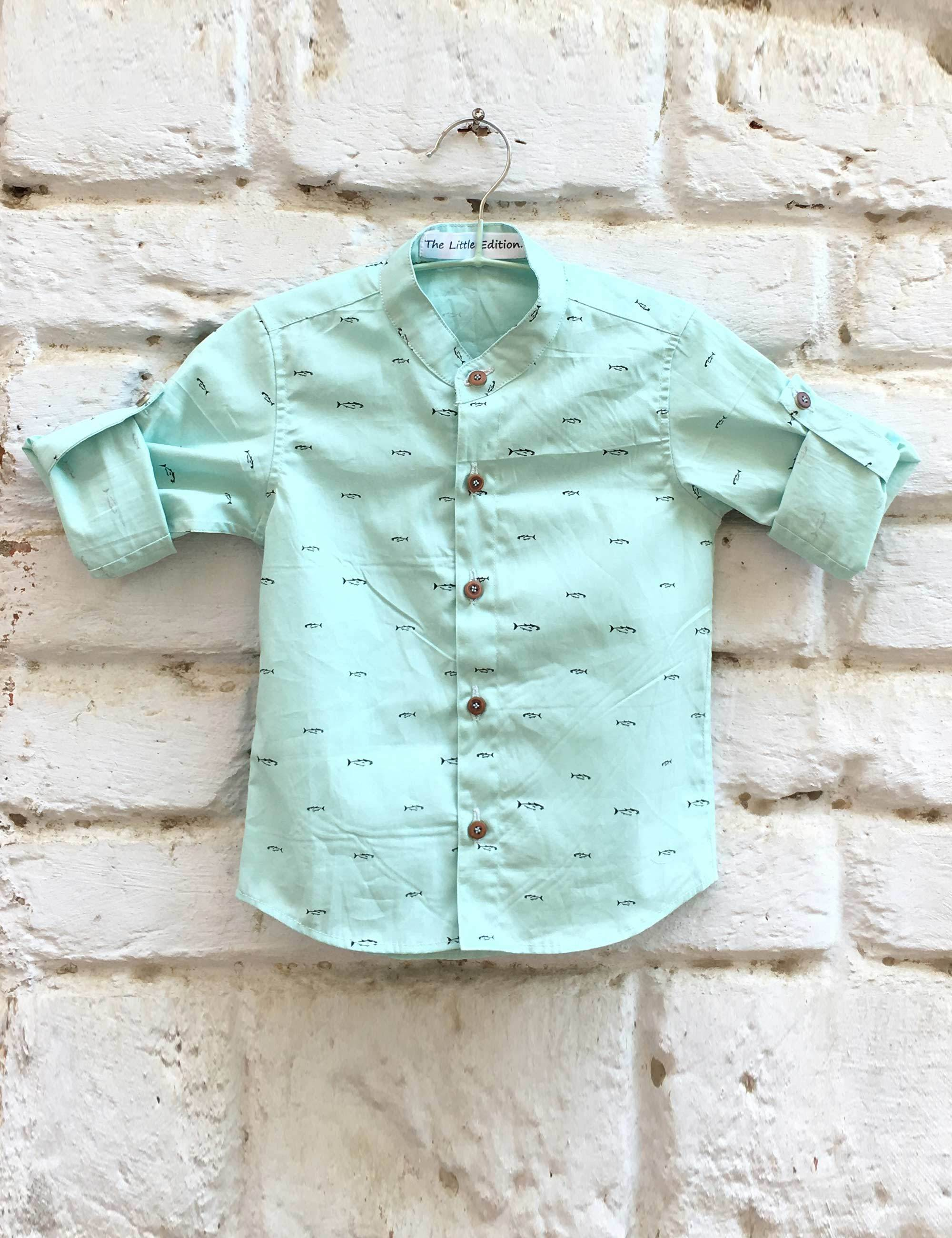Fish Print Blue Color Shirt for Boys