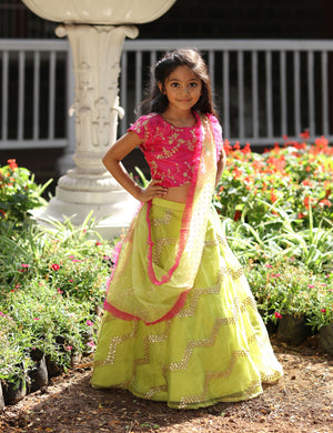 Stylish Pink Crop Top with A Lehenga for Girls