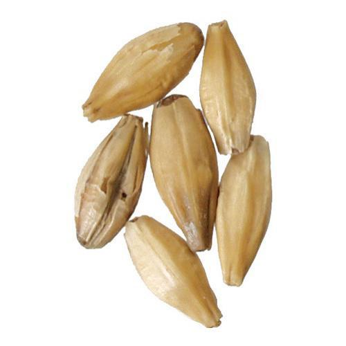 Peated Malt - 1 oz