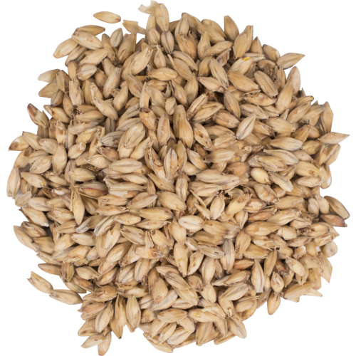 Briess Pale Malt
