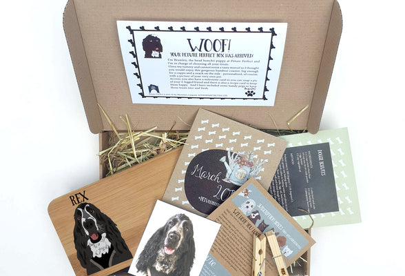 PETure Perfect Dog Illustration Subscription Box