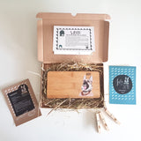 PETure Perfect Dog Illustration Subscription Box - Afewhometruths