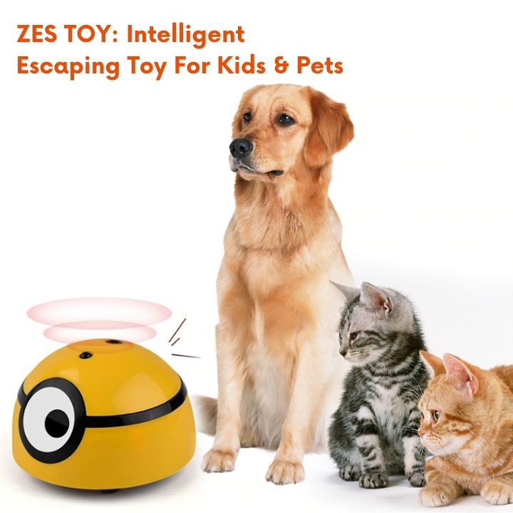 60% OFF NOW: ZES SMART: Intelligent Escaping Toy (BUY 2+ FREE SHIPPING)
