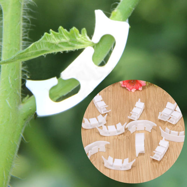 GARDEN SUPPLIES - Plant Tomato Clip Fastener Plant Vines Tomato Vegetable Bush Tendril Binders 100pcs