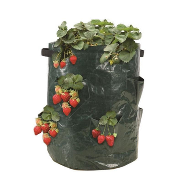 PLANTER - Strawberry Planter Outdoor Vertical Garden Plant Wall Hanging Planting Bag