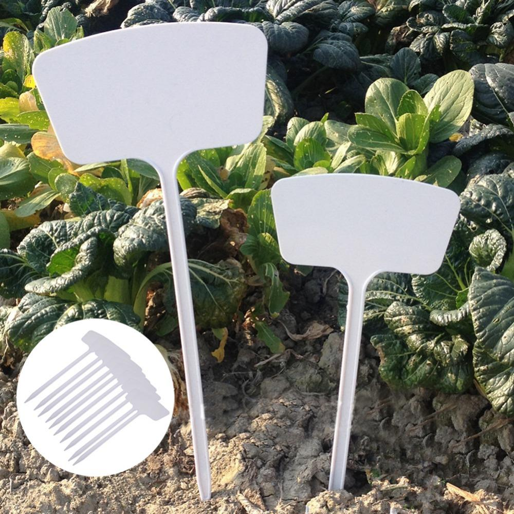 Planting Accessories - 10Pcs 36cm T-type Plastic Plants Labels Flower Thick Tag Marker Nursery Garden Ornaments Decoration White High Quality