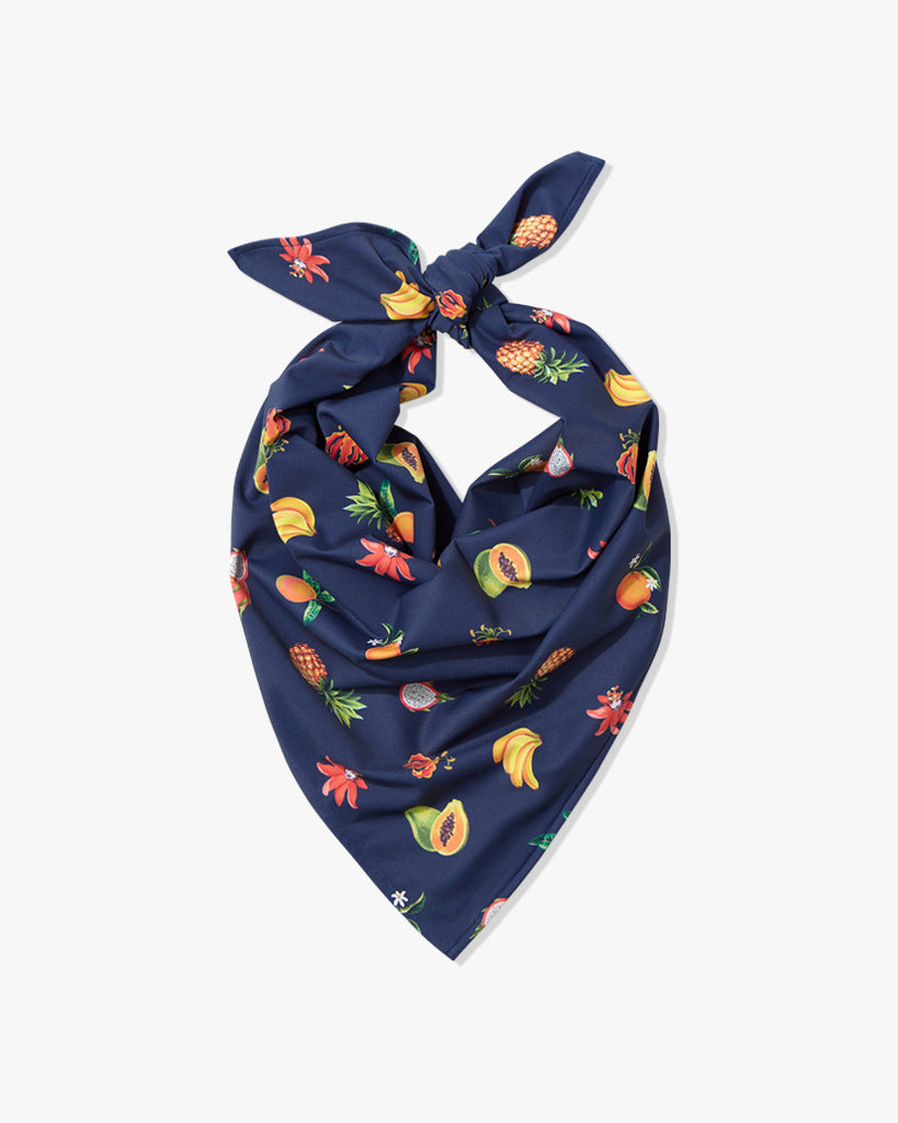 Fruits Navy