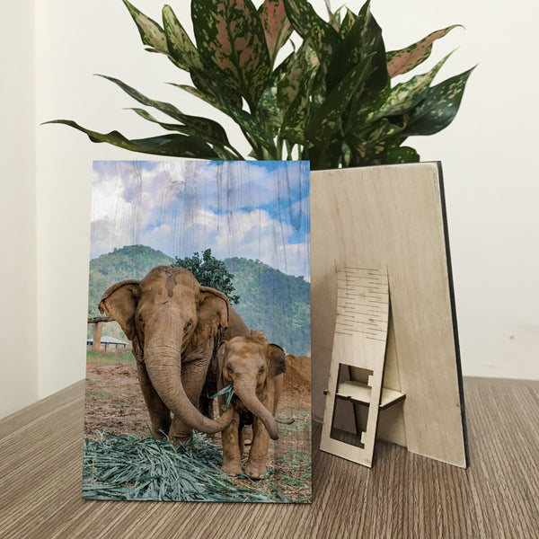 Elephant Chiang Mai Wood Prints