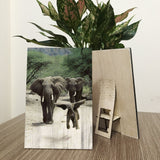 Elephant Family Wood Prints