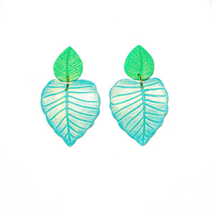 Philodendrons | Turquoise