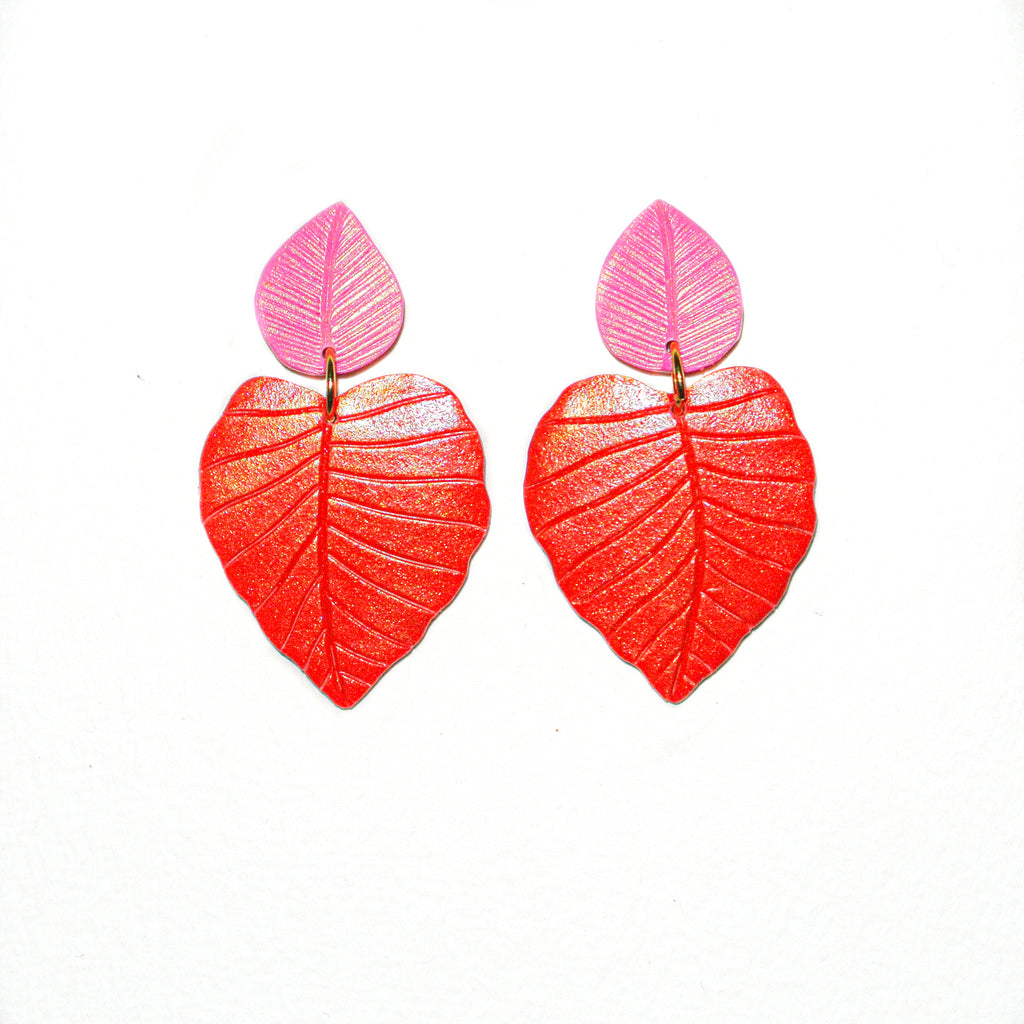 Philodendrons | Red & Pink