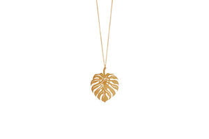 Leaf Love Collar Monstera