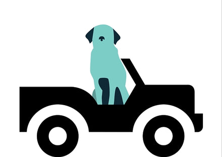 graphic of dog in a car