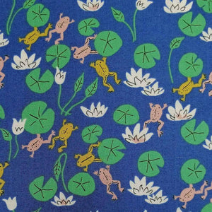 Felbrigg Frogs - 100% Organic Cotton - Cloud9 Fabrics | Ab Fab Textiles