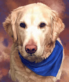 Retriever Portrait from Photo - Colorful Pet Painting | Brandless Artist