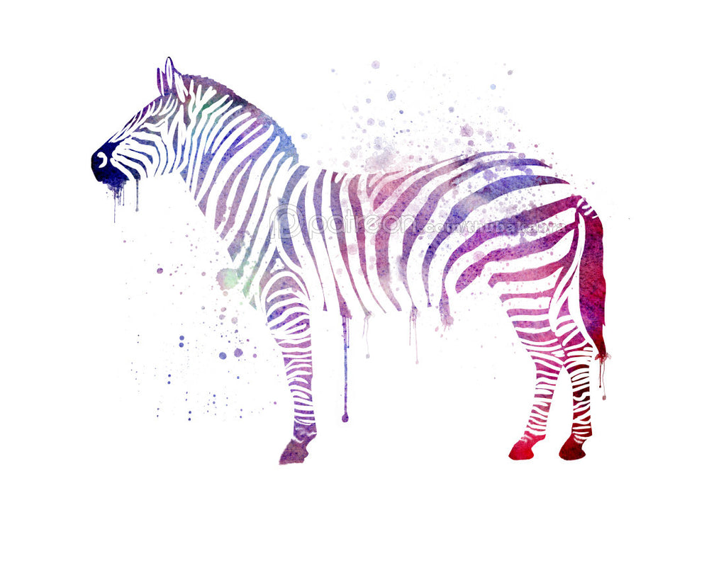 Zebra Decor Art Print | Zebra Wall Art Decor | Large Purple Blue Watercolor Print | Watercolor Zebra Painting Printed on Paper - Brandless Artist