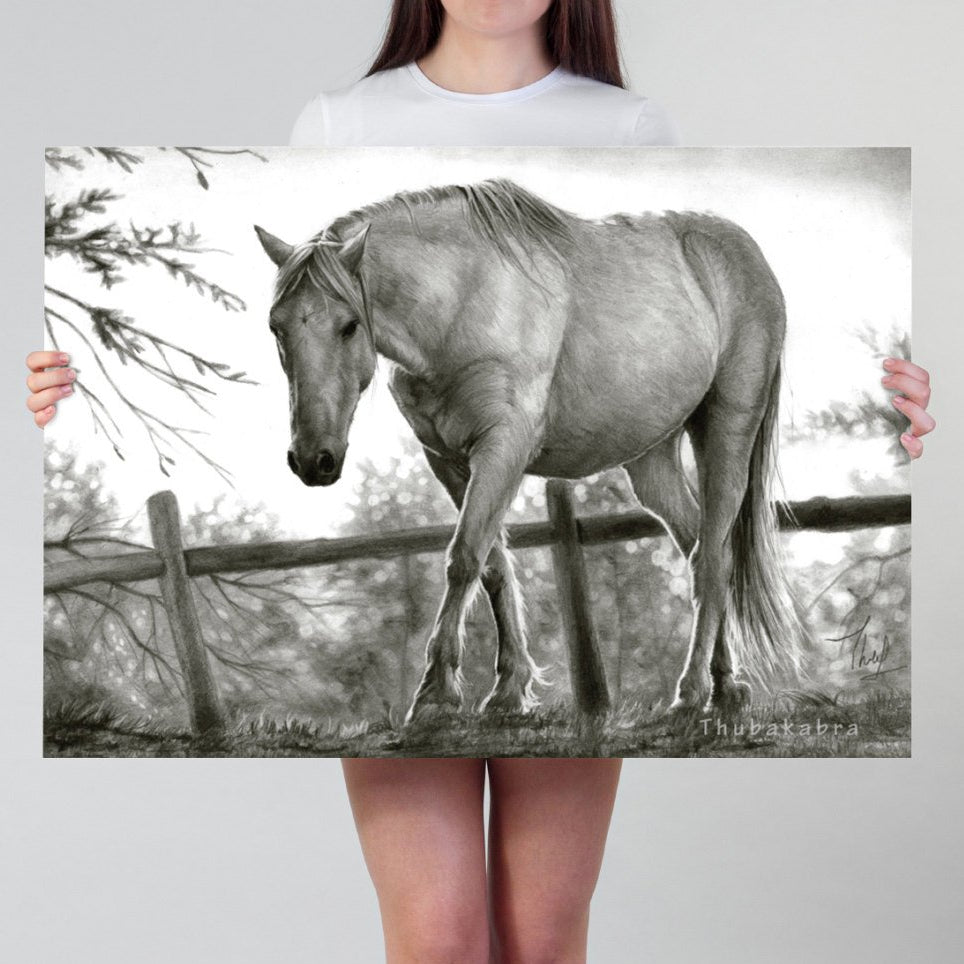 Horse Print | Black and White Pencil Drawing of Horse Art Print | Large Horse Pencil Art Printed on Paper | Photorealistic Pencil Art - Brandless Artist