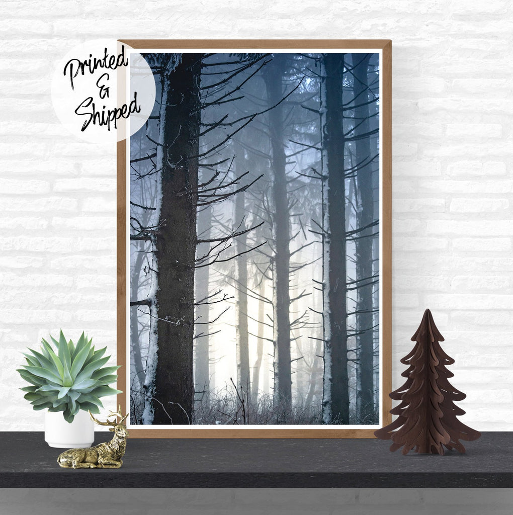 Winter Forest Print | Evergreen Trees in Fog Photography Art Print | Winter Landscape Photo Print | Winter Poster Wall Hanging - Brandless Artist