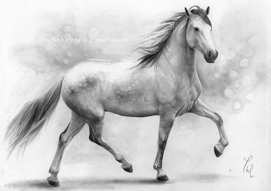 Horse art PRINT, Galloping White Mare Pencil Drawing Print, GICLEE PRINT, Black and White Home Decor, Horse Wall Art, Hyperrealism - Brandless Artist