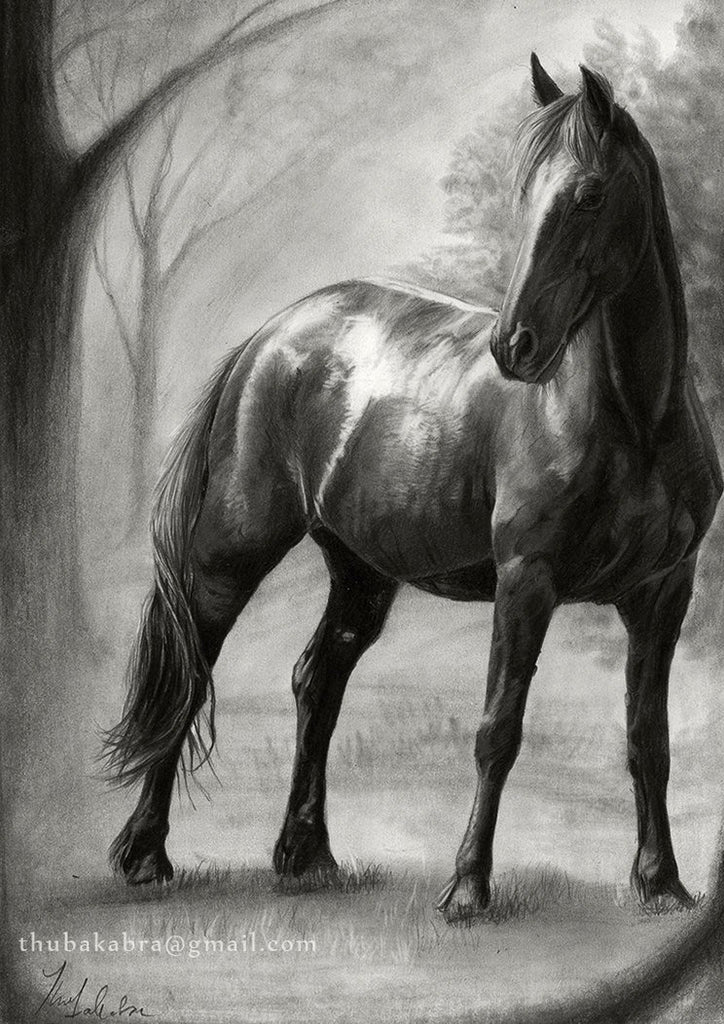 Horse Print Wall Art | Horse Drawing Poster | Black and White Horse Art Print Large Wall Decor | Photorealistic Pencil Drawing of Horses - Brandless Artist