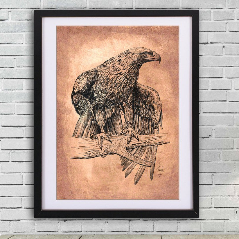 Falcon drawing art PRINT, ink drawing on old paper, GICLEE PRINT, sitting falcon poster, eagle wings illustration print, wild bird poster - Brandless Artist