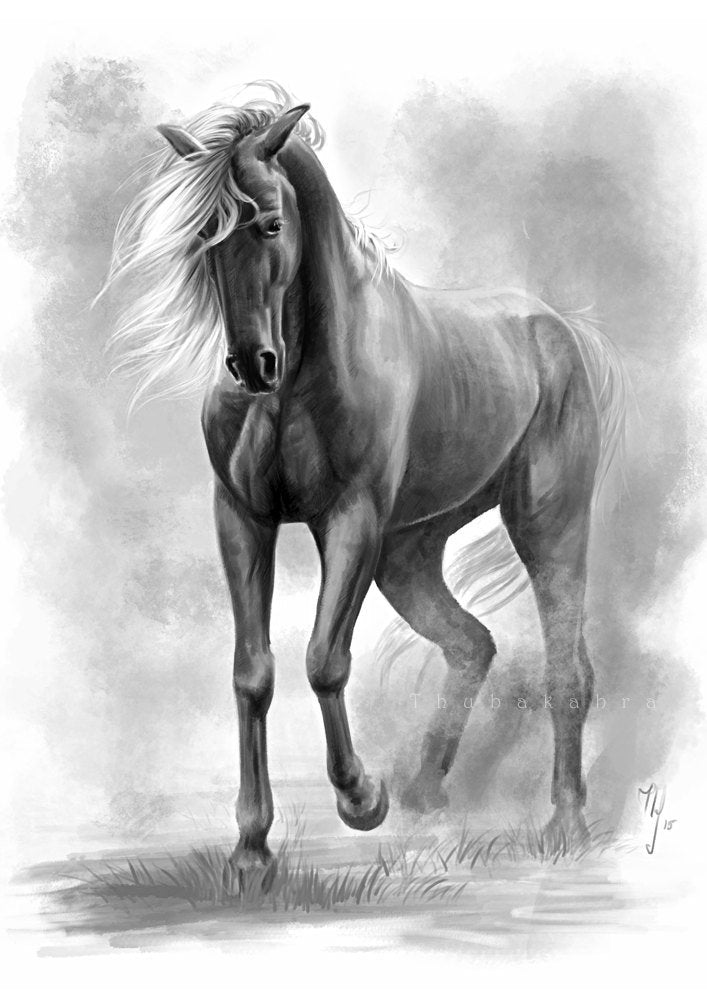 Horse art PRINT, horse digital painting GICLEE PRINT, dark horse art poster wall art decoration, black white wild horse home decor - Brandless Artist