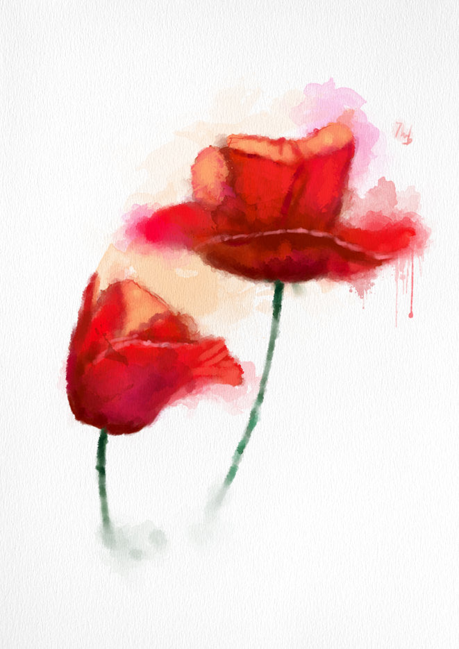 LARGE wall ART, Poppy WATERCOLOR print, Red Poppies Painting Art Print, red Flower art print, hot wall art decor, aquarelle art print - Brandless Artist