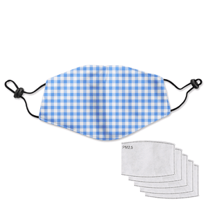 Reusable Adult Mask - Gingham Blue