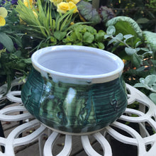Evergreen Flower Pot