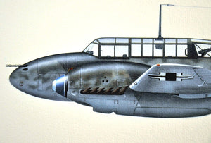 Battle of Britain Me-110/Bf 110