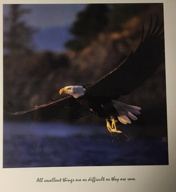 Eagle: All excellent things are as difficult as they are rare