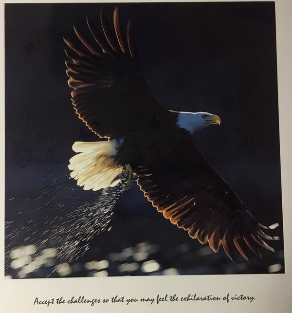 Eagle: Inspirational Print: Accept the challenges so that you may feel the exhilaration of victory