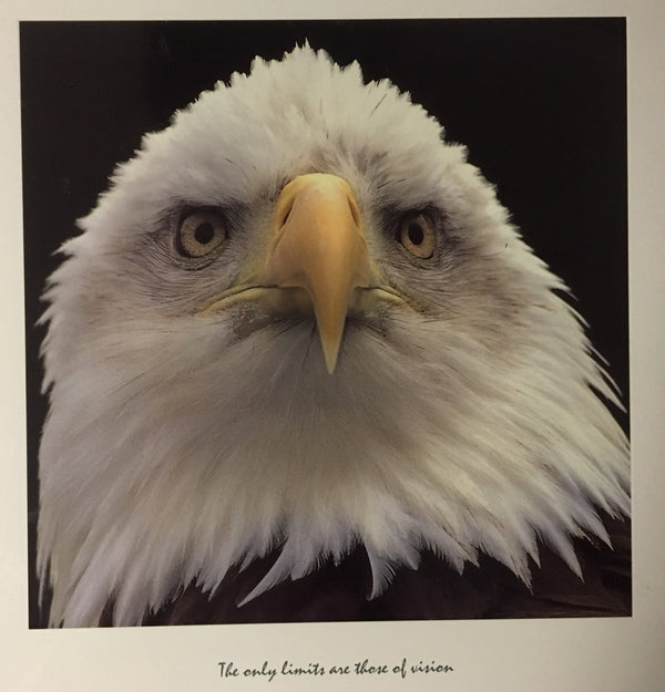 Eagle: The only limits are those of vision