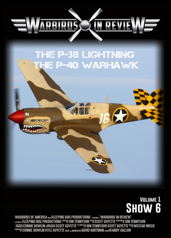 Warbirds in Review 2014 The P-38 Lightning and the P-40 Warhawk
