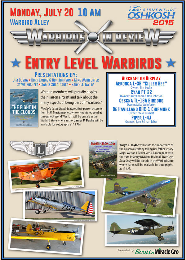 Warbirds in Review 2015 Entry Level Warbirds