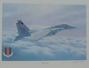 Gulf Spirit: F-15 Aircraft  33rd Tac Fighter Wing Commander