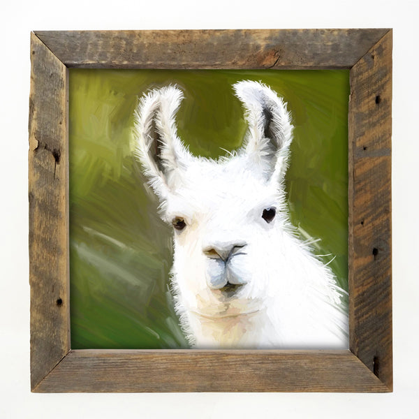 Llama - White Large / Natural