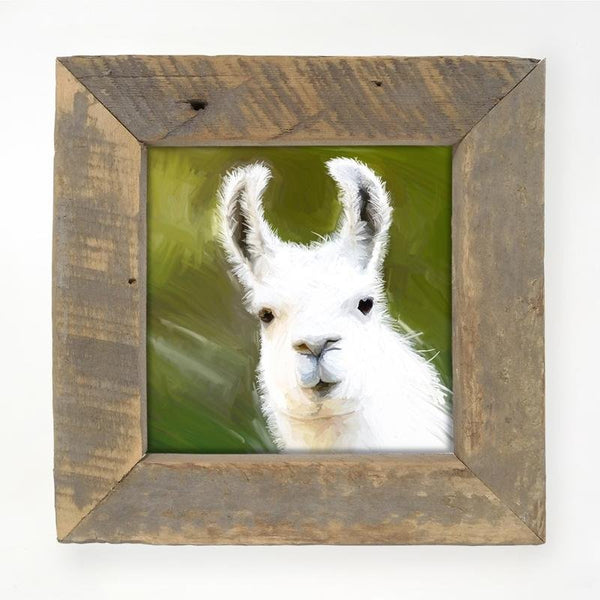 Llama - White Small / Natural