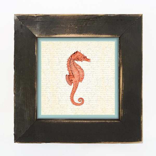 Sea Horse - Coral Small / Black
